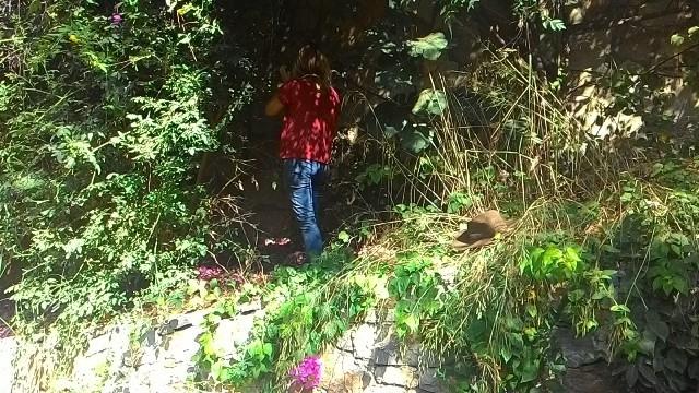 Orman olmuş bir alandan özel bir bahçeye dönüşüm